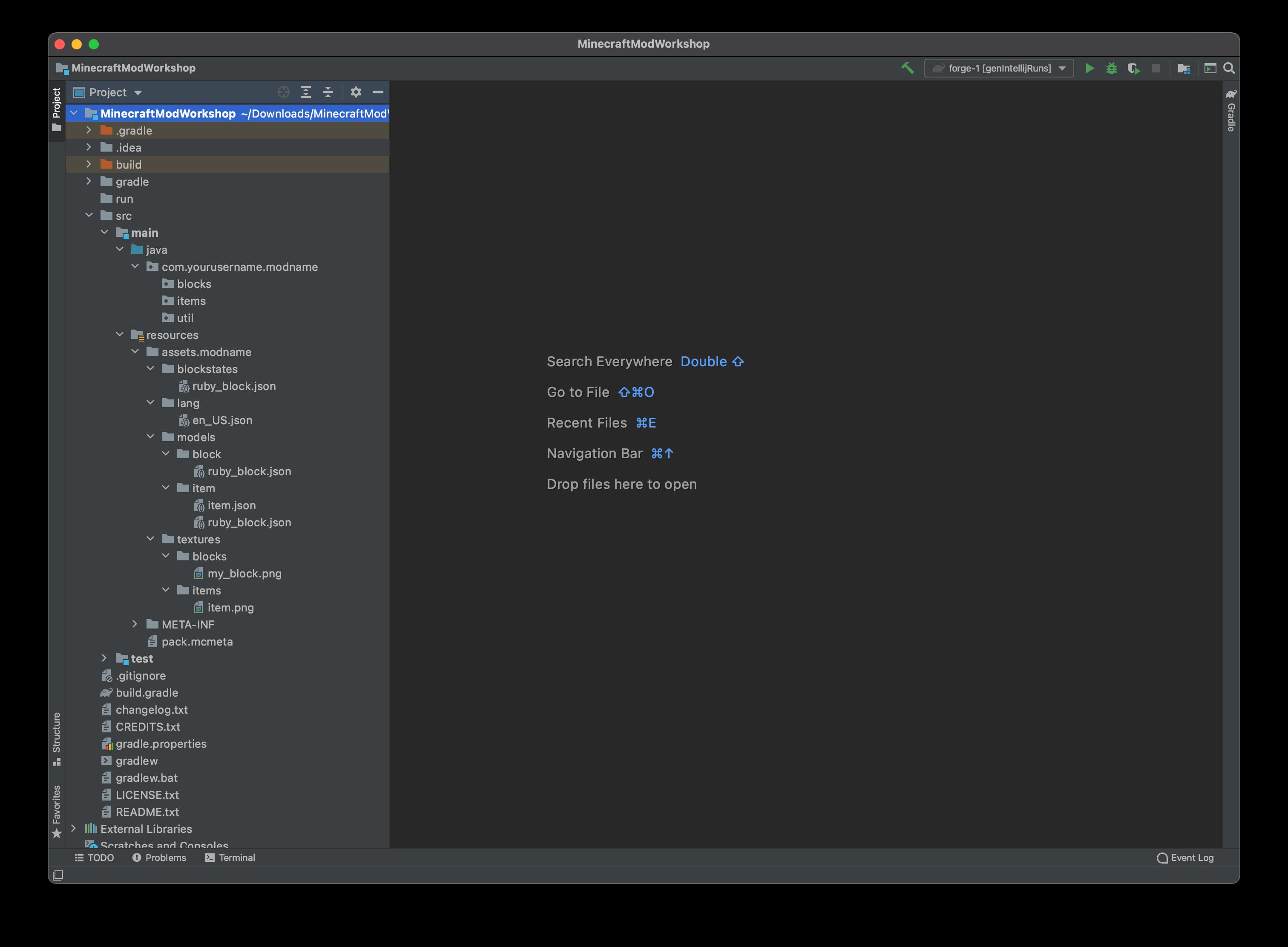 IntelliJ starter project